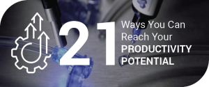 21 Ways to Reach Your Productivity Potential button